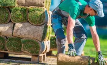 园林植物养护与管理