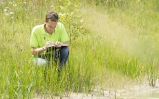 草地资源调查与规划