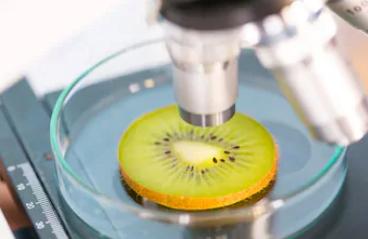 082701K  食品科学与工程